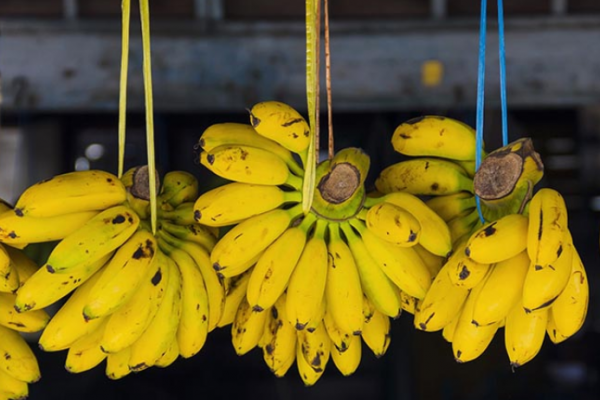How to store bananas to make them last longer?